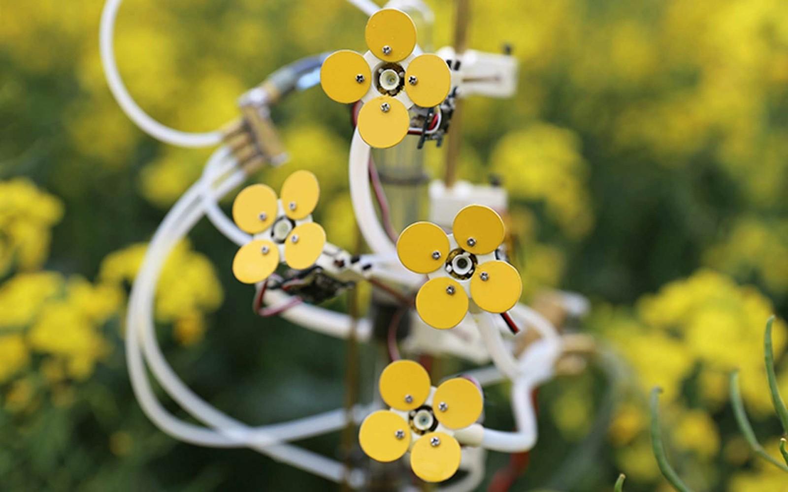 Des fleurs robotiques imprimées en 3D