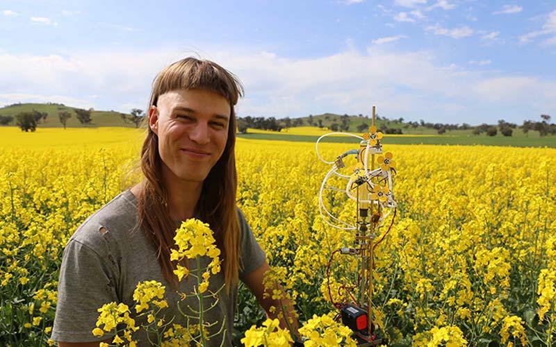 fleurs robotiques imprimées en 3D pour sauver les abeilles